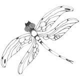 Dragonflie Ejemplo gráfico dibujado mano en blanco y negro stock de ilustración