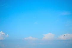 Dragonflies in the blue sky Stock Images