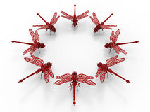 Dragonflies circular array. 3D rendered illustration of multiple dragonflies arranged in circular pattern. The composition is isolated on a white background with Stock Images