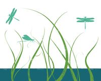 Dragonflies in grass Stock Photography