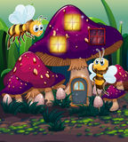 Dragonflies near the enchanted mushroom house Stock Images