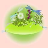dragonfly на луге Стоковые Изображения RF