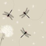 dragonfly одуванчика иллюстрация штока