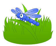 Dragonfly шаржа Стоковое Изображение RF