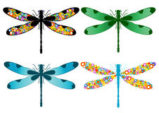 Dragonfly. Four dragonflies isolated on a white background Stock Image