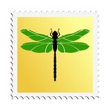 Dragonfly. Colored stamp of insect. Dragonfly Royalty Free Stock Photos