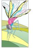 Dragonfly 2 Stock Photo