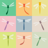 Dragonfly Стоковые Фотографии RF