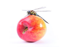 Dragonfly on apple. A dragonfly on an apple on white background Stock Photos