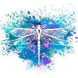 Dragonfly on background of paint splashes. Dragonfly on colorful background of paint splashes Stock Images