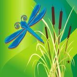 dragonfly bagno ilustracja wektor