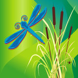 dragonfly bagno Obrazy Royalty Free