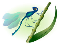 Dragonfly with blue wings. EPS10 vector illustration Royalty Free Stock Photo
