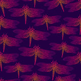 Dragonfly, bright insect, seamless pattern. Gradient orange pink Royalty Free Stock Photography