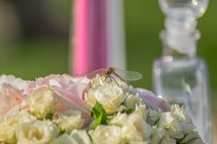 Dragonfly on the bunch of flowers. Dragonfly on the wedding bunch of flowers Royalty Free Stock Photos
