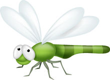 Dragonfly cartoon Royalty Free Stock Image