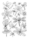 Dragonfly collection, sketch for your design Royalty Free Stock Image