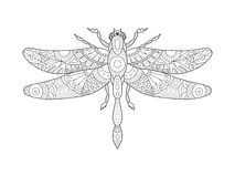 Dragonfly coloring book for adults vector Royalty Free Stock Photos