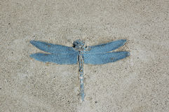 Dragonfly in Concrete Stock Image