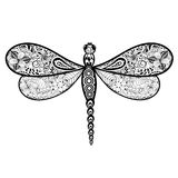 Dragonfly doodle Stock Image