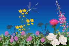 Dragonfly on flower field illustration Royalty Free Stock Images