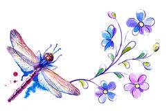 Dragonfly and flowers on the white background Royalty Free Stock Photos