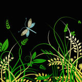 Dragonfly and foliage vector background Stock Photos