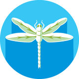 Dragonfly icon Stock Photography