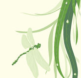 Dragonfly illustration Stock Image