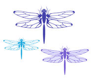 Dragonfly. Isolated objects on white background. Vector illustration (EPS 10&#x29 Stock Photography