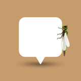 Dragonfly Isolated on Speech Banner Royalty Free Stock Photography