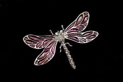 Dragonfly Jewelry Isolated on Black Royalty Free Stock Photo