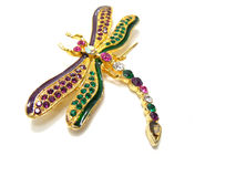 Dragonfly jewelry Stock Photography