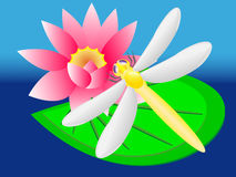 Dragonfly on lily Royalty Free Stock Images