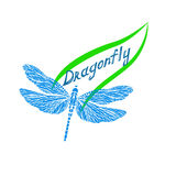Dragonfly logo. Delicate dragonfly on the contour of the green leaf and the inscription dragonfly Royalty Free Stock Photos