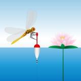 Dragonfly obsiadanie na pławiku lily wody Woda połów Zdjęcia Royalty Free