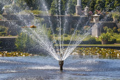 Dragonfly over the fountain jets royalty free stock photos