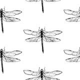 Dragonfly pattern Stock Photos