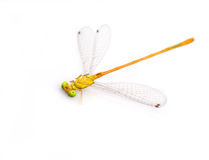 Dragonfly pin. Dragonfly on a white background Stock Photography