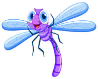 Dragonfly in purple color Royalty Free Stock Photos