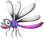 Dragonfly with purple color Stock Photos