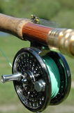 Dragonfly on the rod stock photos