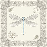 Dragonfly and rose drawing Royalty Free Stock Photography