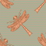 Dragonfly seamless pattern Royalty Free Stock Images