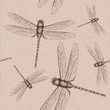 Dragonfly sketch Royalty Free Stock Images