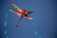 Dragonfly in the Sky  1 Stock Photography