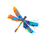 Dragonfly of splash paint Royalty Free Stock Photography