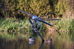 Dragonfly statue in water surrounded by ducks Royalty Free Stock Photos