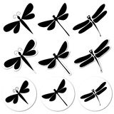 Dragonfly stickers Royalty Free Stock Photos
