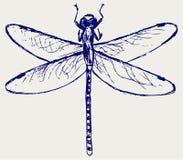 Dragonfly szkicowy Obrazy Royalty Free